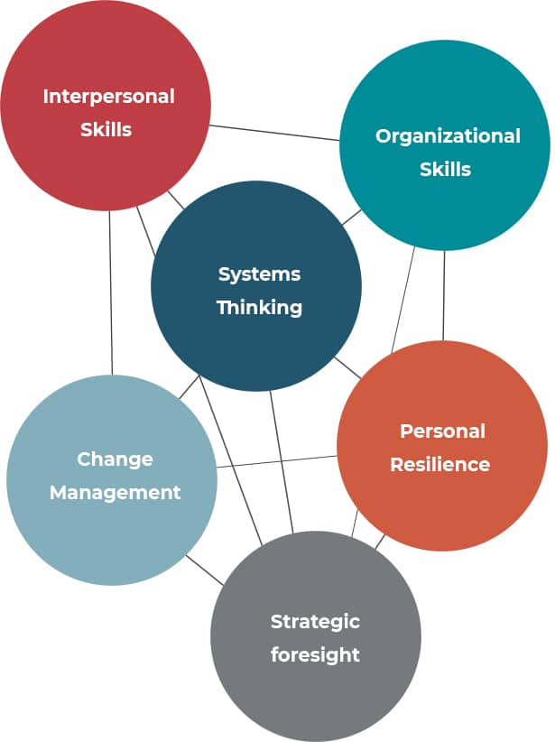 graphic depiction of ASI competencies for Transition Leadership
