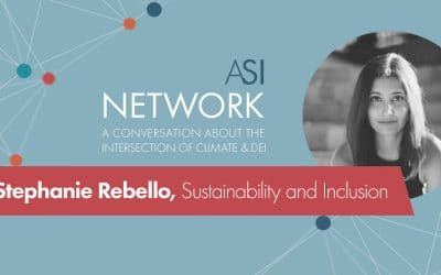 The Evolving Role and Impact of Sustainability Professionals